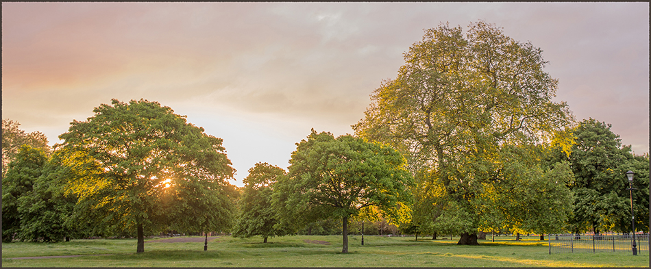 Dawn on Clapham Common West Side, 9 May 2014, 5:45 a.m.
